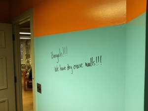 Dear Dry Erase Wall Paint, please do not make me regret taking a chance on you!