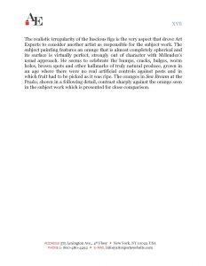 melendez-stoskopff-report-copy-2_page_17